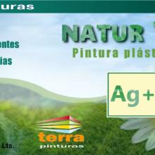 PINTURA PLASTICA NATUR-1000 Ag+