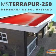 MS TERRAPUR 250