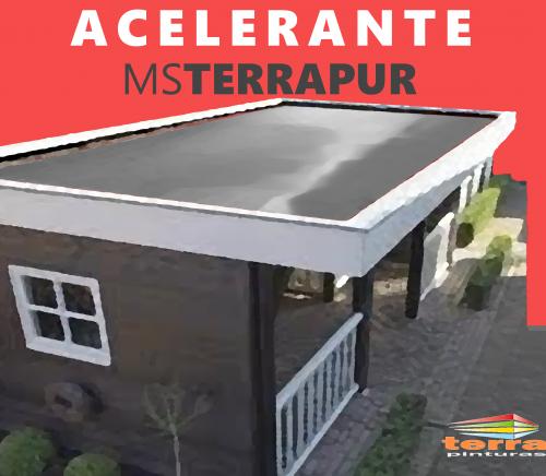 MS TERRAPUR ACELERANTE 1 L